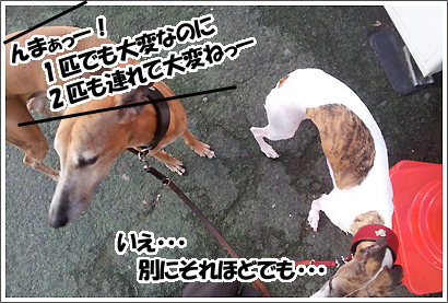 20121019_3.jpg