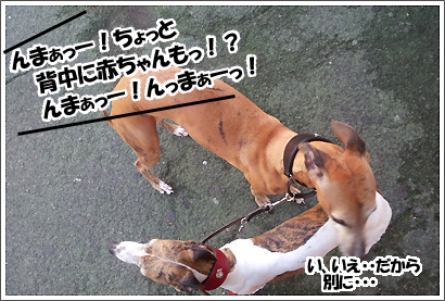 20121019_4.jpg
