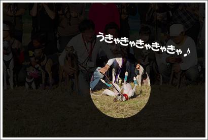 20121021_33.jpg