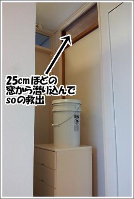 20121103_22.jpg