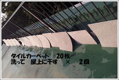 20121103_23.jpg
