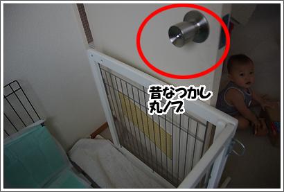 20121114_19.jpg