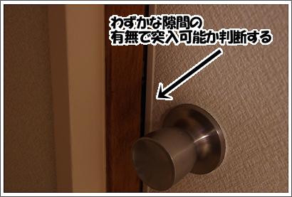 20121114_21.jpg