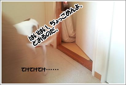 20121116_3.jpg