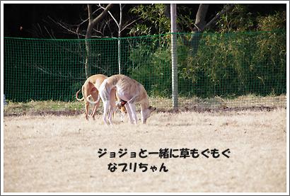 20121219_7.jpg