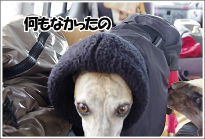 20130119_13.jpg