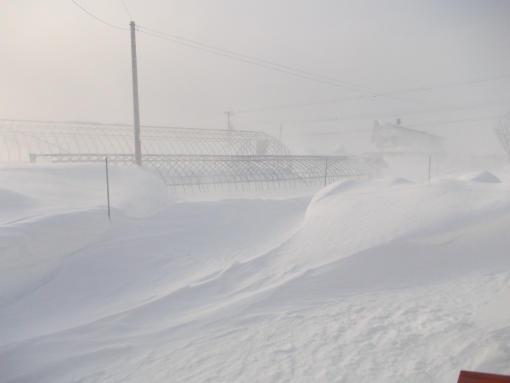 20130101_吹雪2