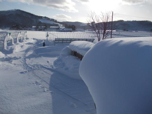 20130108_雪下ろし開始