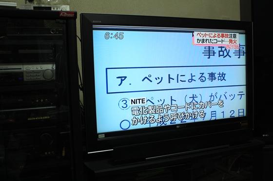 IMG_8857.jpg
