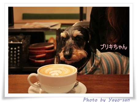 shonan_0501_18