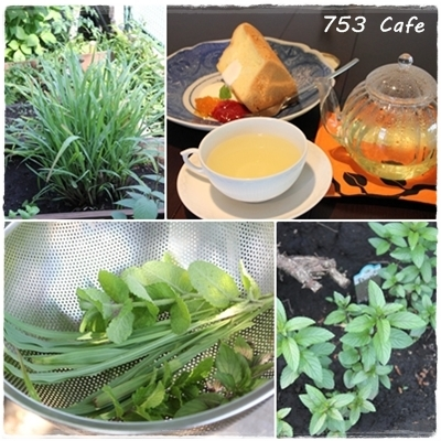 page_753herb_201305