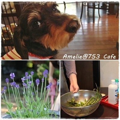 page_753herb_201305_2