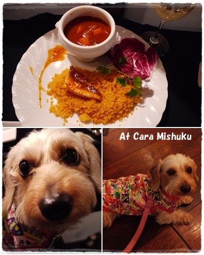 page_cara_mishuku_201303