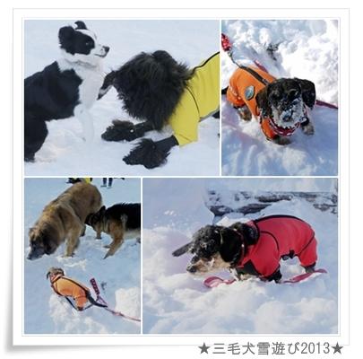 page_yuki2013_3