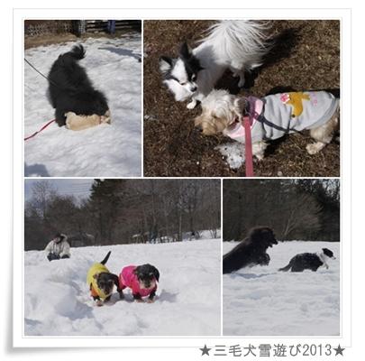 page_yuki2013_6
