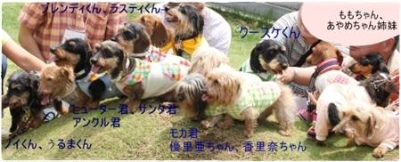 shinseki3