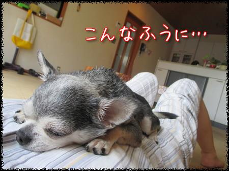 チャポリ&ヒロ姉