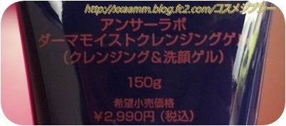 P1020811.jpg