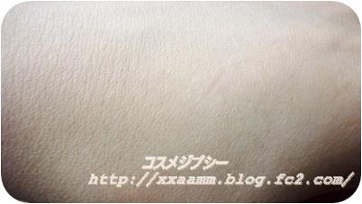 P1030841.jpg