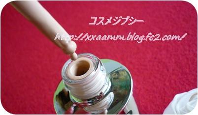 P1040301_20130329114637.jpg