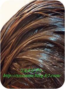 P1040566_20130404113609.jpg