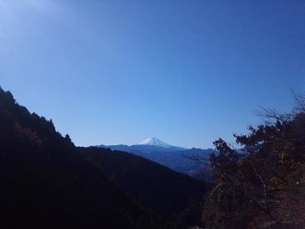 20111204_wada.jpg