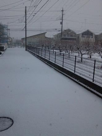 20130114_snow.jpg