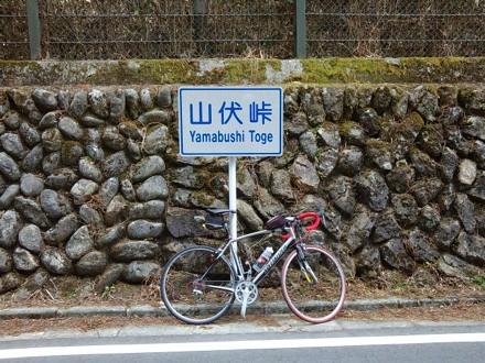 20130323_yamabusi.jpg