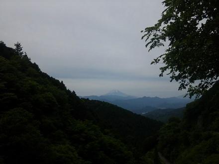 20130601_wada3.jpg