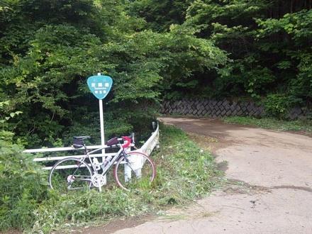 20130623_takasino.jpg