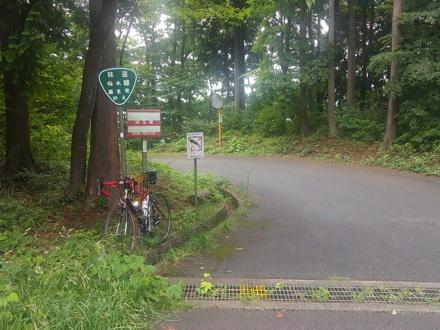 20130623_umemoto.jpg
