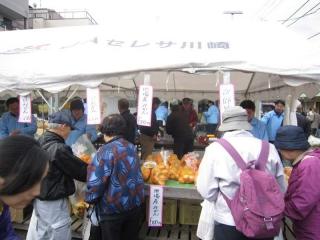 農業祭り_014