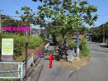route10_20121122224741.jpg