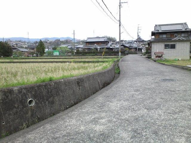 Hashimoto07.jpg