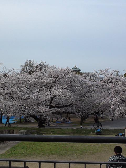 OsakajoR01.jpg