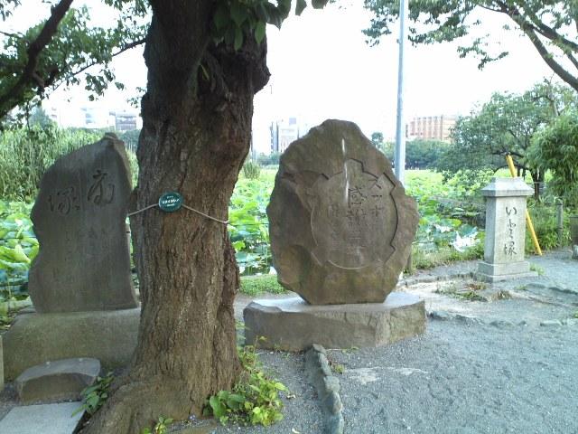 Shinobazu19.jpg