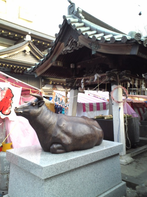 yushima_ushi.jpg