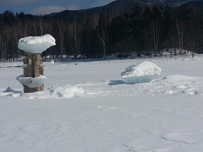 糠平湖東岸キノコ氷3