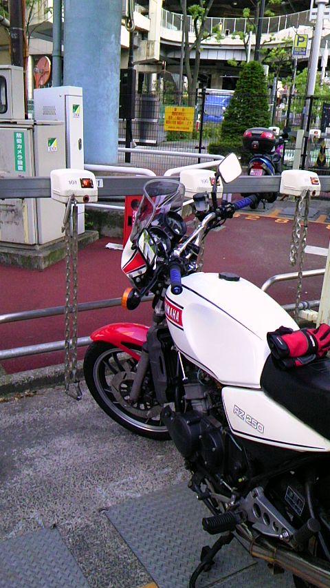 PAP_0074.jpg