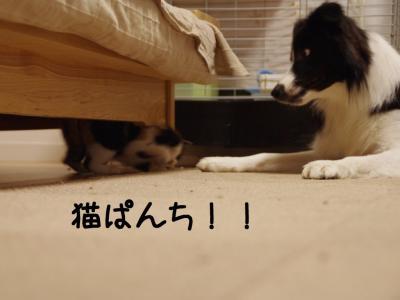六花速し06.12/12/11