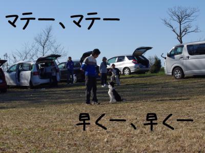 CSDC4回04.12/12/16