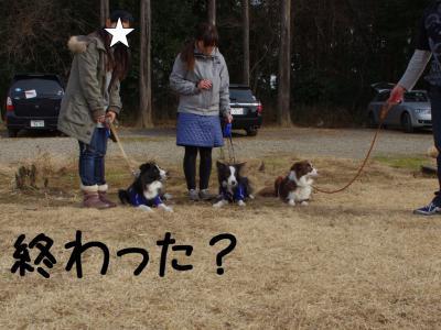 JFAつくば裏12.13/01/07