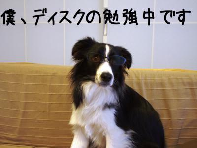 やまめがね04.13/01/10