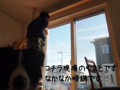 猫道08.13/01/13