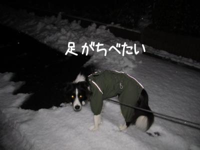 初雪体験09.13/01/14