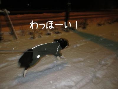 初雪体験12.13/01/14