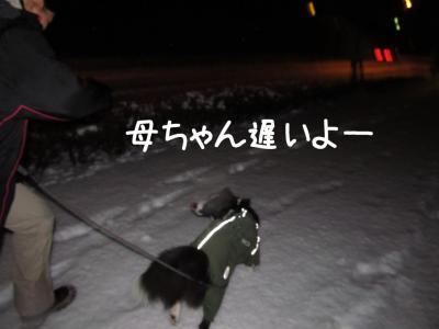 初雪体験13.13/01/14