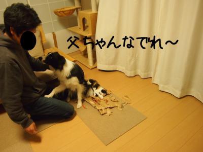 フリー留守番06.13/01/17