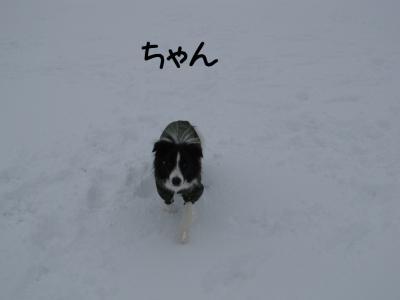 雪リターンズ06.13/01/28