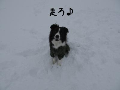 雪リターンズ10.13/01/28